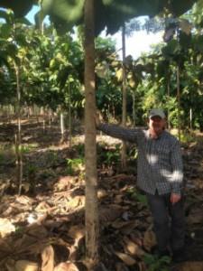 CSR projekt i Panama