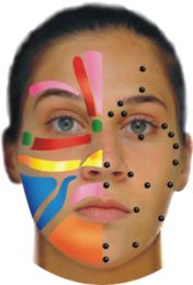 Stress behandling med ansigtszoneterapi er ren egenomsorg