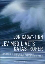 Hvorfor er mindfulness så powerful ifølge Jon Kabat-Zinn