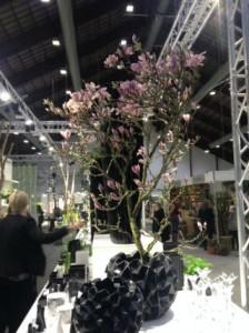 Dekoration med Magnolia