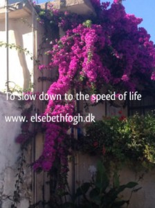 Citater om livet - to slow down to the speed of life